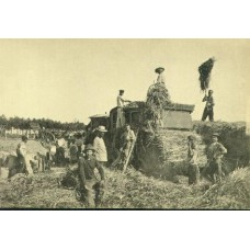 Loading Hay. FRENCH COLLOTYPE