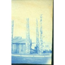 Cyanotype. Totem Poles (SOLD)