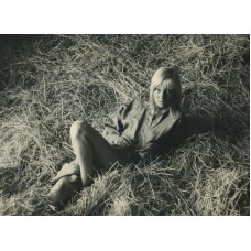 Greene, Milton. Portrait Of May Britt In The Hay